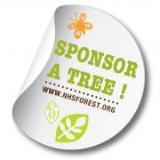 Sponsor a tree on NHSForest.org