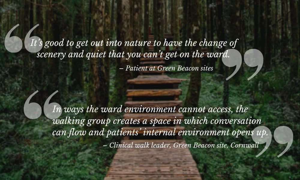 Quotes from Green Walking Groups