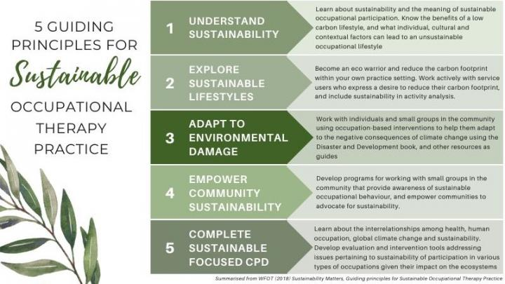 Guiding Principles for Sustainable Occupational Therapy Practice