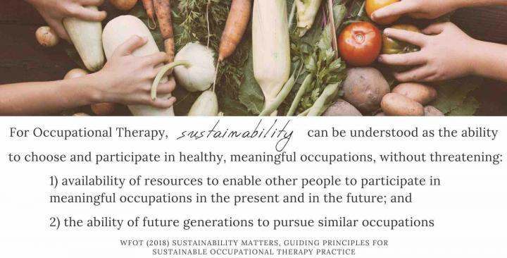 Sustainable Occupational Therapy definition