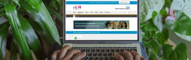hee_environmentally_sustainable_healthcare