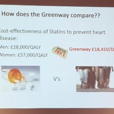 Cost-effectiveness green vs statins
