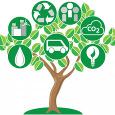 OT, Sustainable, education, tree, OT Education, climate change